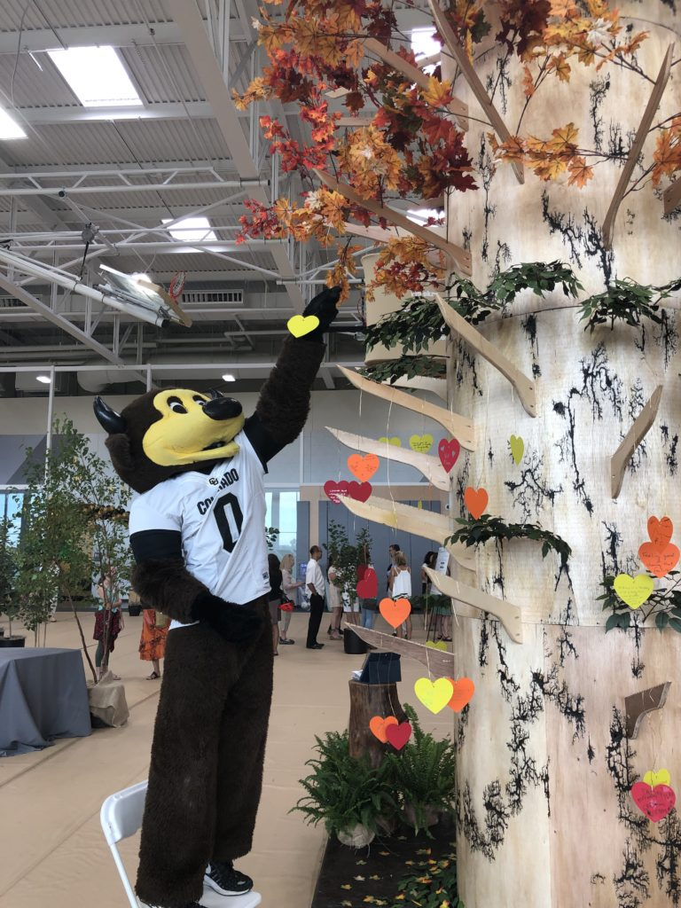 """University of Colorado mascot """"Chip"""" interacting with our sculpture."""