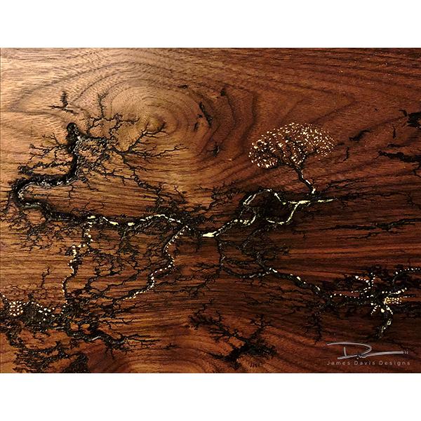 Fine art Lichtenberg Denver