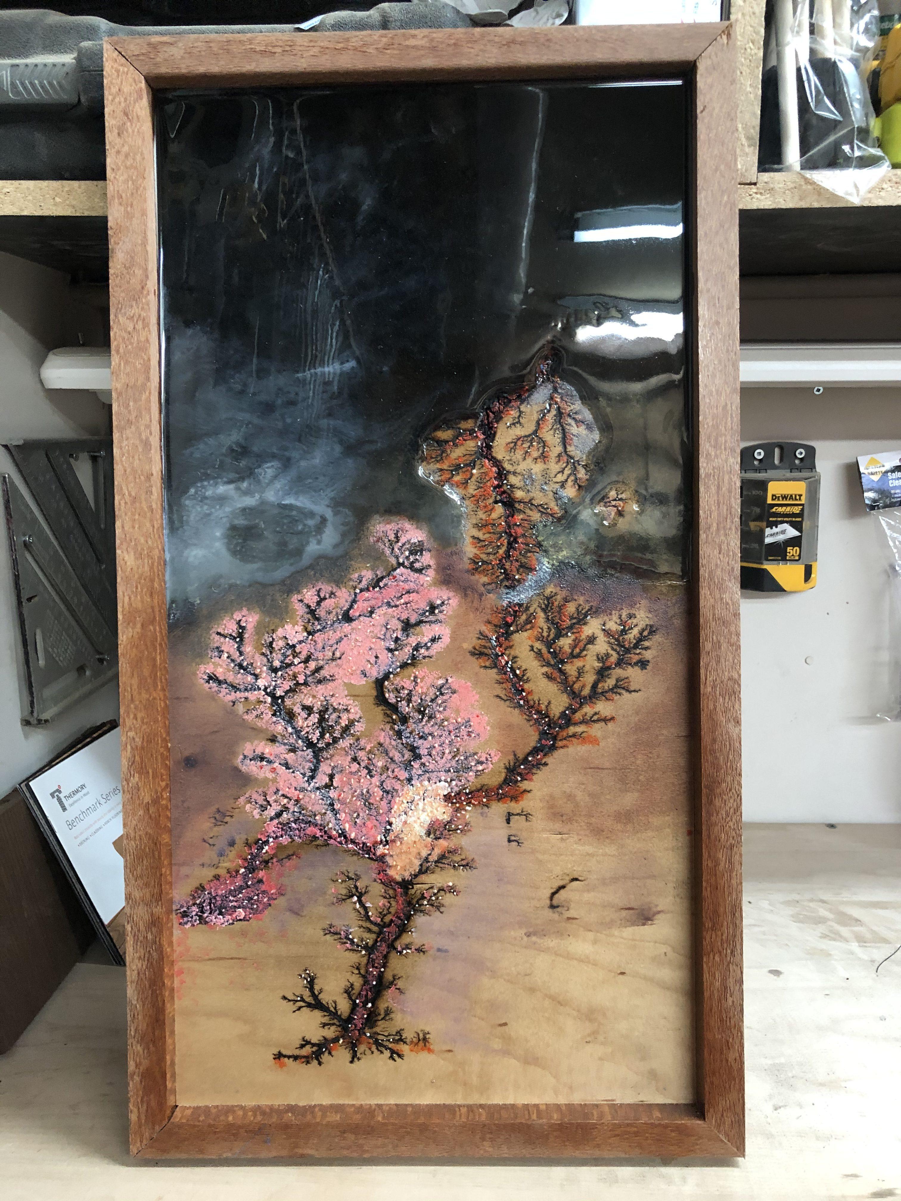 Fine art cherry blossom Lichtenberg